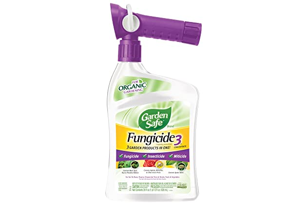 Best fungicide for trees | Amazon com