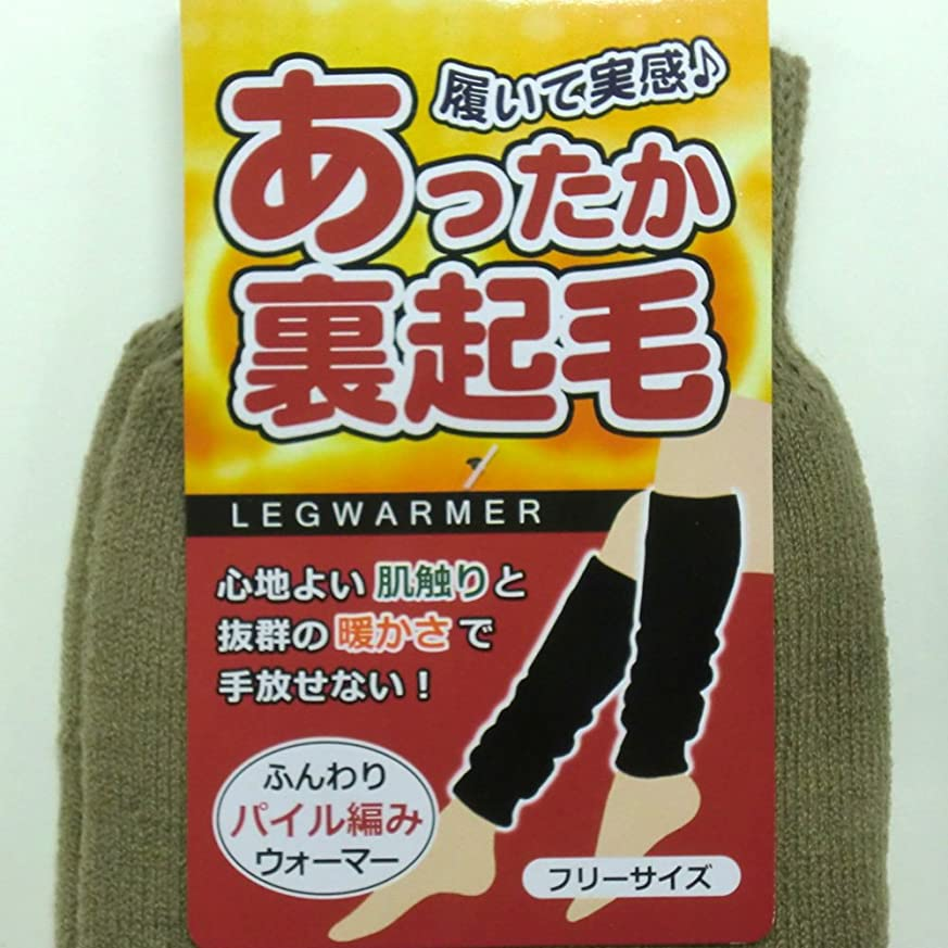 抜粋ブラインド逆あったか ロング レッグウォーマー 45cm丈 裏起毛 パイル編み カプサイシン加工 男女兼用 2足組(柄はお任せ)