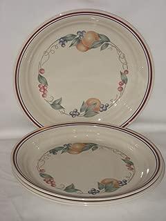 Set Of 4 - Corning Corelle Abundance 1991-2009 8 1/2 Inch Luncheon Plates