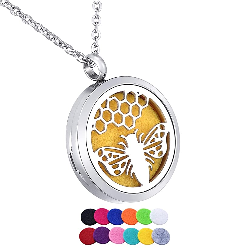 HooAMI Essential Oils Aromatherapy Diffuser Locket Necklace Stainless Steel Perfume Jewelry for Women Men