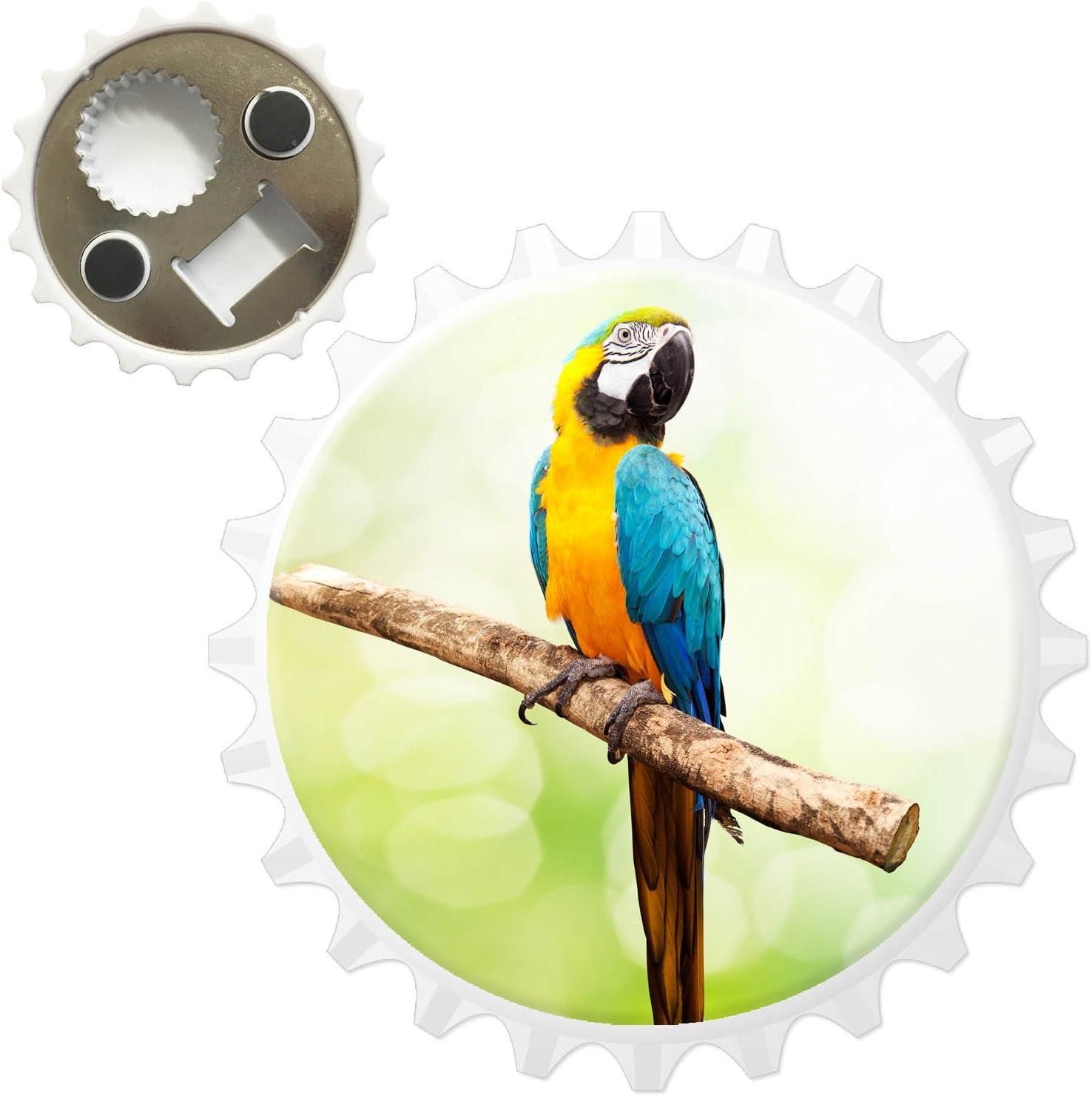 African Grey Parrot Sat In Trees Bottle Opener Fridge Magnet