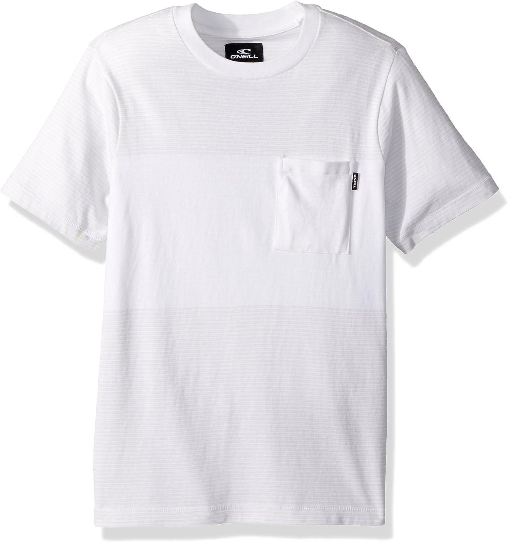 O'Neill Boys Big Boys Bernardo Crew Knit Shirt