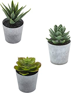 Artificial Succulents set of 3 mini Realistic Fake Plants with plastic Pots for Home and..