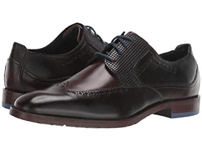 Stacy Adams Rooney Wing Tip Oxford (Brown/Blue) Men