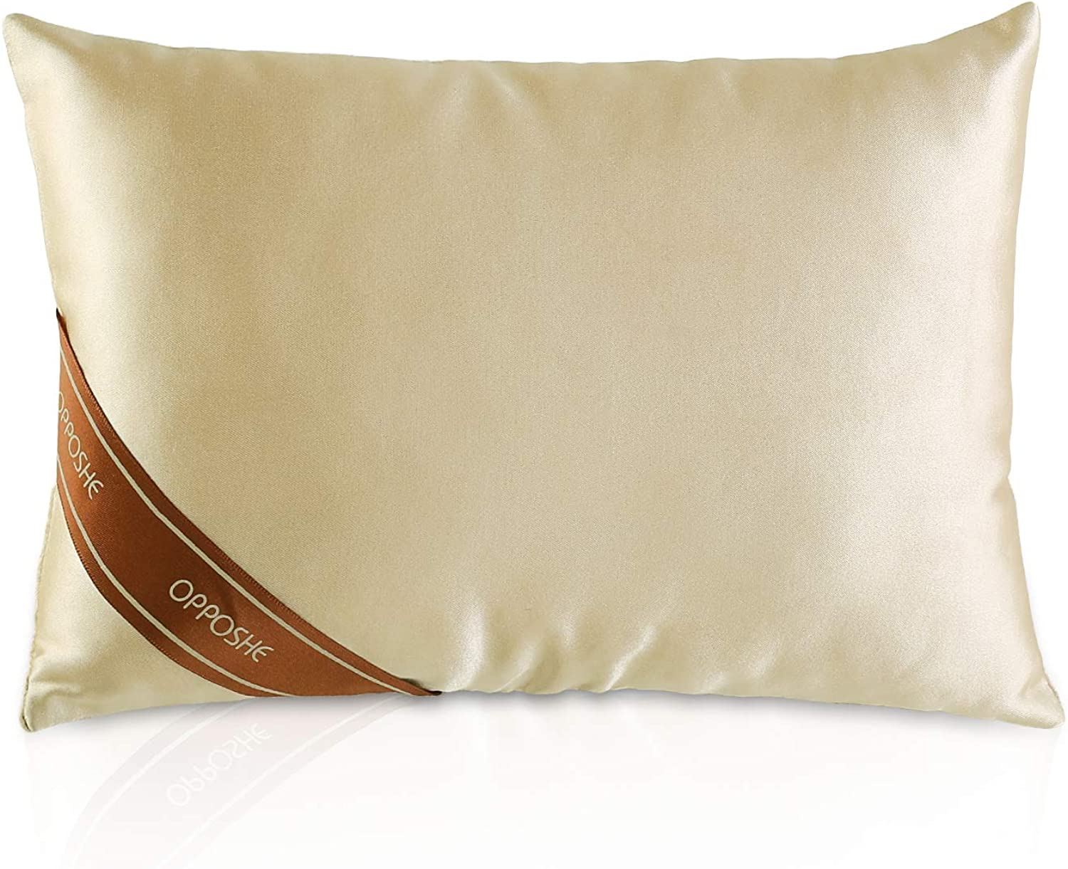 OPPOSHE Popular products Purse Pillow Insert for Raleigh Mall Silky Luxury Sh Handbags