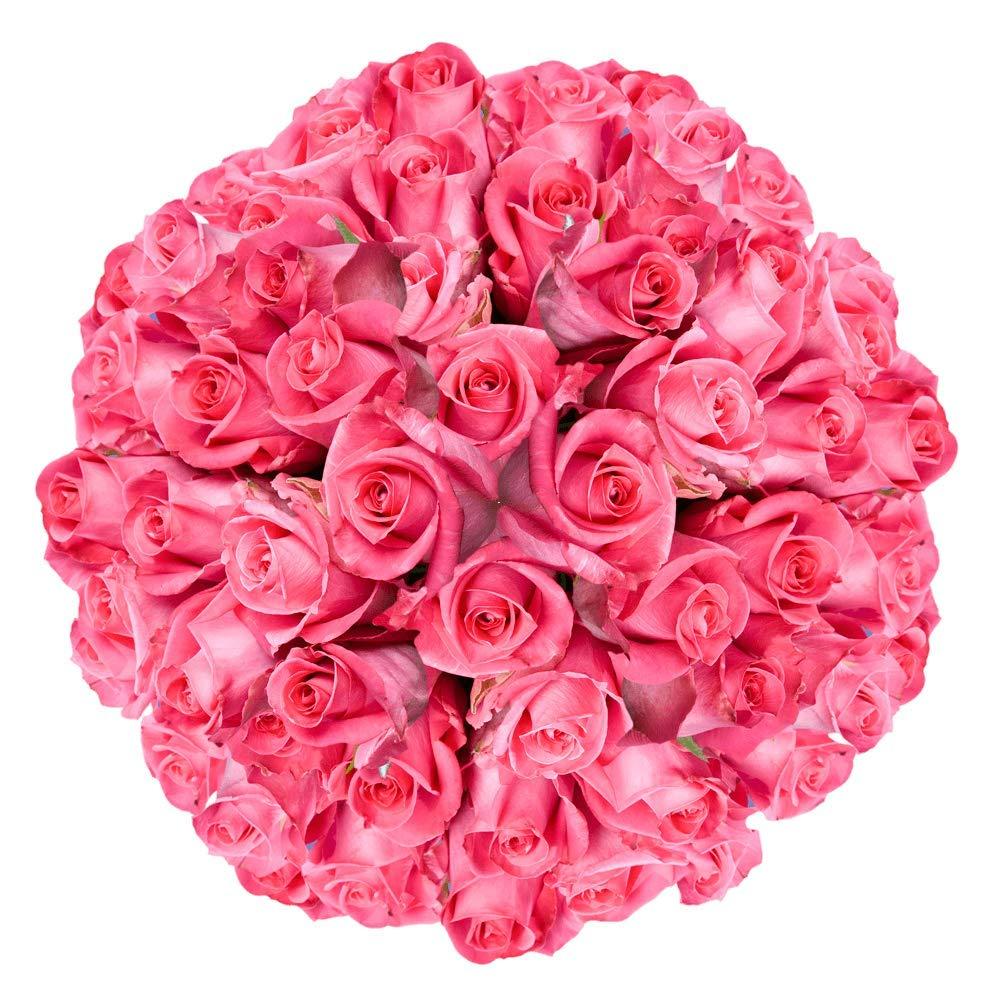 GlobalRose 100 Fresh Cut Deep Dark Engagement - Roses Pink sale Very popular