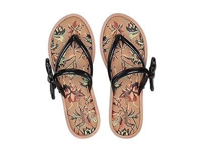 + Melissa Luxury Shoes x Jason Wu Flip Flop Sandal (Beige/Black) Women