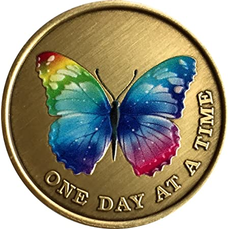 RecoveryChip If Nothing Changed Thered Be No Butterflies Bronze Serenity Prayer Medallion Butterfly Pocket Token