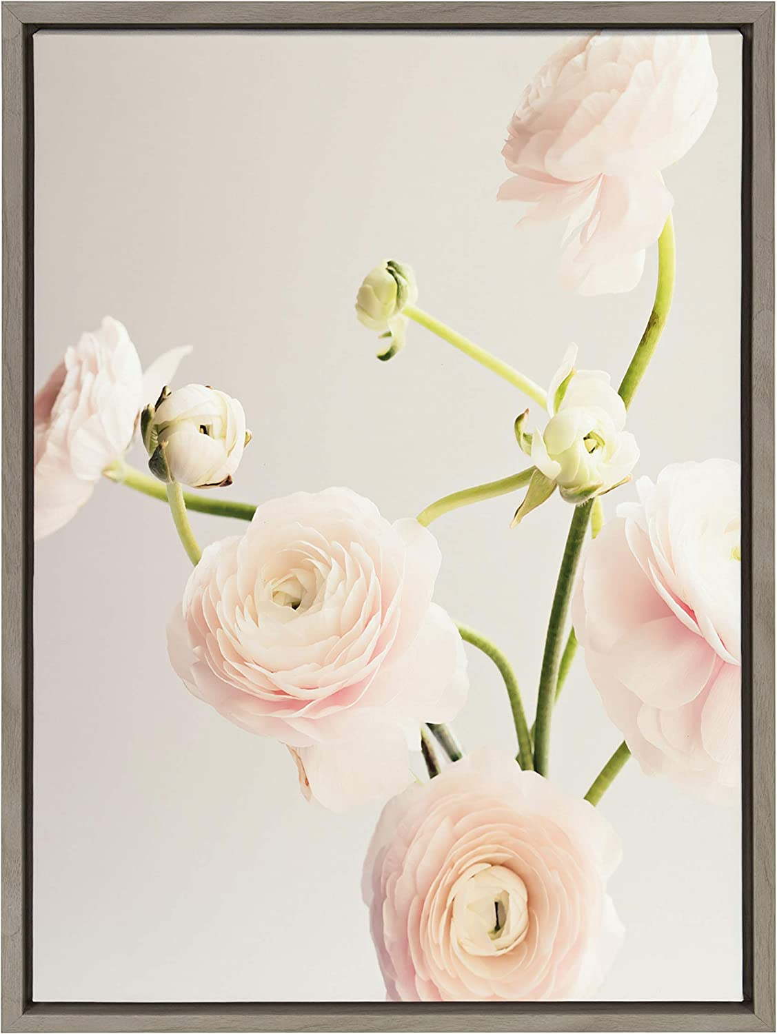 Kate and Laurel Sylvie Ranunculus Limited time sale Framed Art Wall San Antonio Mall Canvas by Caro