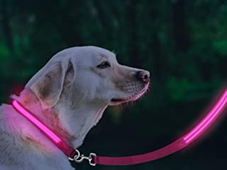 [FunnyBubble] LED Dog Safety Leash- USB Rechargeable, 3 Light Modes - Available in 5 Colors, with Matching Collars