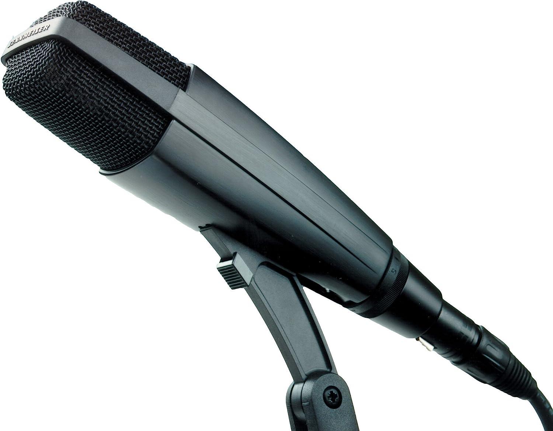 Sennheiser MD 421-II Best Microphone for Acoustic Guitar