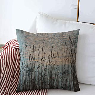 Throw Pillow Covers Blue Baltic Sea Island Sveaborg Finland Nature Grass Lightning Natural Design Cushion Square Case Linen Cases for Winter Couch Decor 18