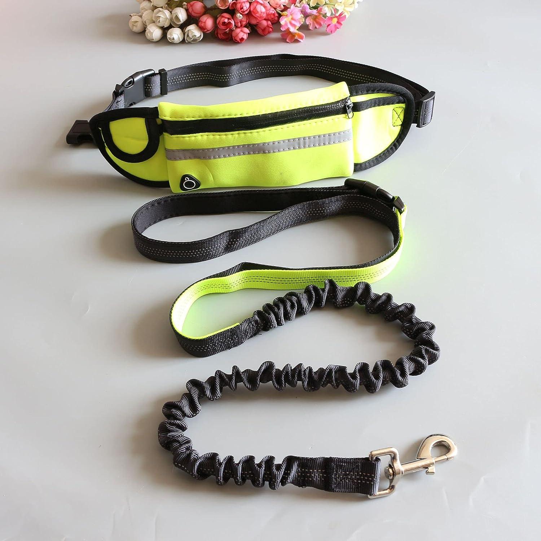 Leashes Pet Portable Many popular brands Superior Dog Training Outdoor Bag R Pocket Waist