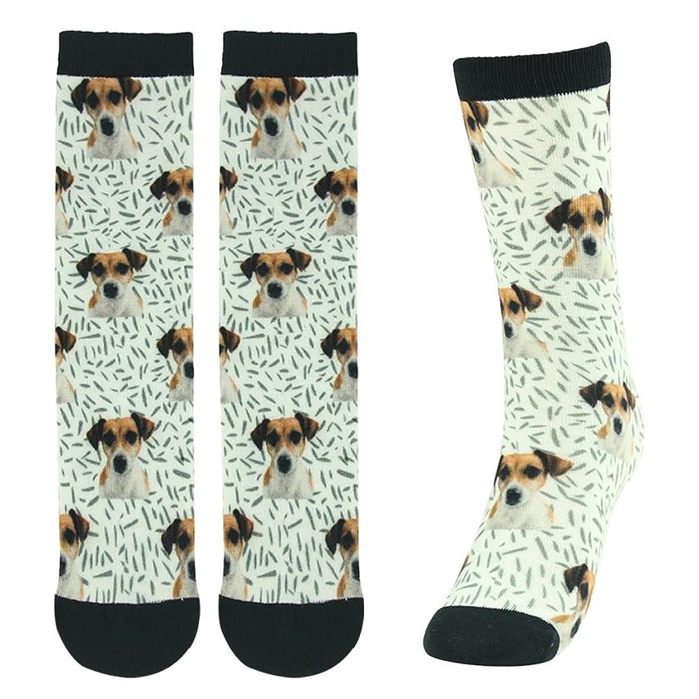 Fun Animal Print Socks, J'colour Cute Patterned Novelty Crew Dress Socks Gift