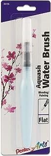 Pentel Arts Aquash Water Brush, Flat Tip, 1-Pack Carded (FRHMHBP)