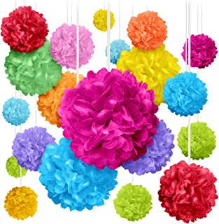 """20 Colorful Pom Poms for Birthdays, Parties and Event Decorations - Tissue Paper Flowers - Assorted Sizes of 6"""", 8"""", 10"""", ..."""