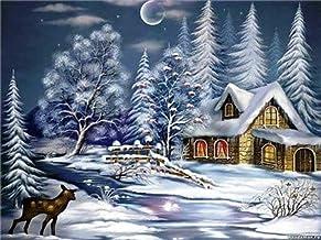 YQYW Pintar por número Kit de Pinturas al óleo de Bricolaje Paisaje nevado y cabaña a la luz de la Luna Lienzo con Pinceles Decoraciones Decoraciones 40x50cm