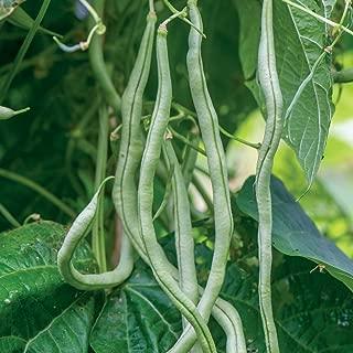fortex pole beans
