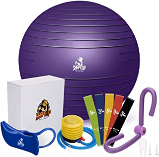 SHAPE UP Home Workout Equipment for Home Gyms | Pilates Ball with Quick Pump, Thigh Master, Hip Trainer & Resistance Bands Set of 5 Included | All in 1 Workout Equipment | eBook & Manual | Bundle of 4