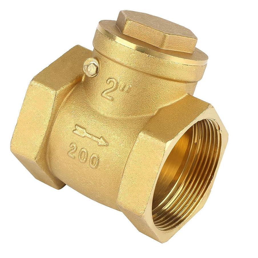 各どれ幅DGF-FF チェックバルブ、DN50 BSPノンリターンスイングチェックバルブ通常は水のために使用される2