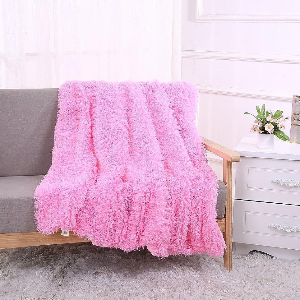繊細愛されし者反毒柔らかいふわっと マイクロファイバー掛け毛布 毛足の長いブランケット ひざ掛け 秋冬二重防寒毛布 洗濯可能 冷房対策 背景毛布