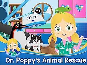 Dr. Poppy's Animal Rescue
