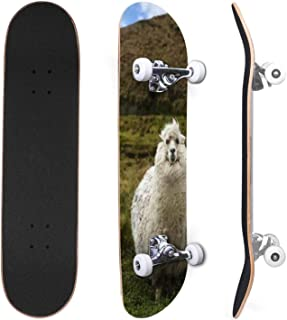 Classic Concave Skateboard Alpaca is a domesticated species of South American camelid It Canadian Maple Trick Skateboards ...