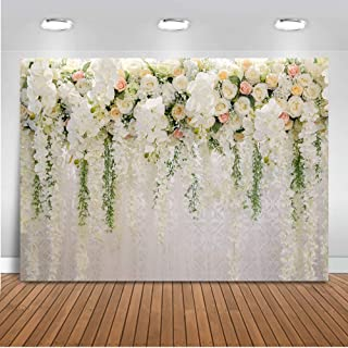 Best valentine backdrop ideas Reviews
