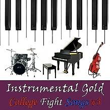 Best fighting gold instrumental Reviews