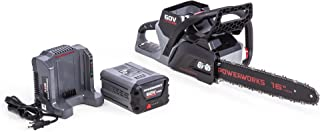 Best snapper 60v 2.5ah battery Reviews
