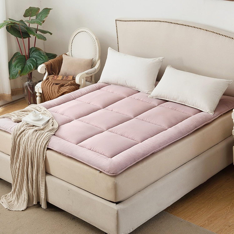 Tatami Mattress Student,[Dorm Room], Single Bed Mattress  Mattress Foldable Mattress Padded Mattress Sleeping pad-D 100x200cm(39x79inch)