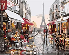 Painting by Numbers for Adults Beginners Canvas Oil DIY Paint by Numbers Kit Indoor Wall Decoration Gifts Arts and Crafts(...