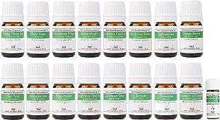 【2019年改訂版】ease AEAJアロマテラピー検定香りテスト対象精油セット 揃えておきたい基本の精油 1・2級 17本セット各5ml