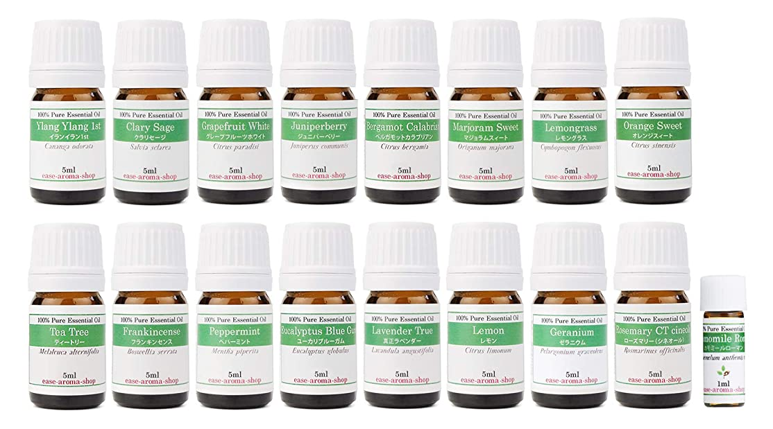 心配つばわずかに【2019年改訂版】ease AEAJアロマテラピー検定香りテスト対象精油セット 揃えておきたい基本の精油 1?2級 17本セット各5ml