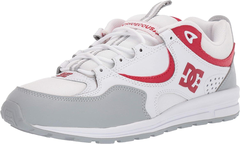 奉呈 DC Men's Kalis LITE Skate Shoe Grey White 10.5 US Red M 引出物