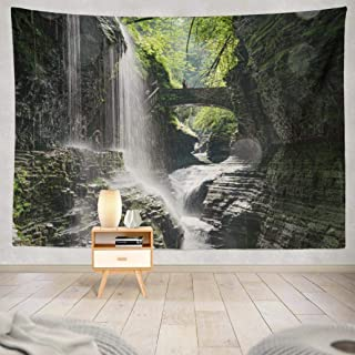 Alricc Wall Hanging Tapestry State New York USA Awesome Beautiful Beauty Park Creek Wall Tapestry Dorm Home DÃcor Bedroom Living Room in 80X60 Inch,State New York