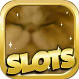 How To Beat The Slots : Persian Edition - Free Slots, Video Poker, Blackjack,...