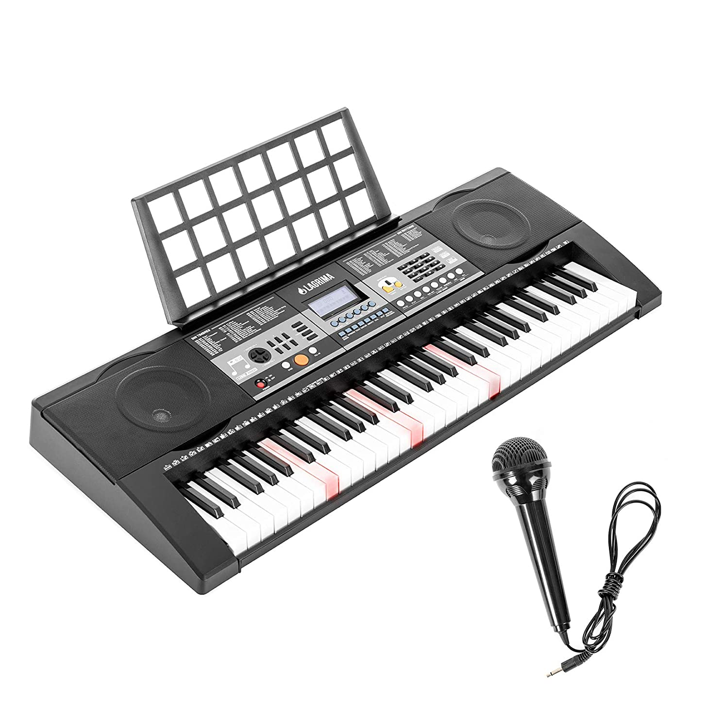61-Lighted Key Electric Piano Keyboard,Portable Digital Music Electronic Keyboard with Microphone, Power Supply, Music Stand for Beginner, Black