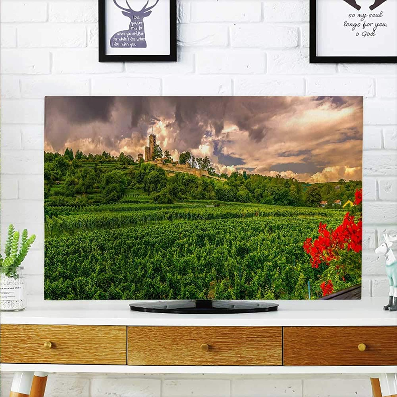 Aolankaili Predect Your TV Home Guard Predect Your TV W32 x H51 INCH TV 55