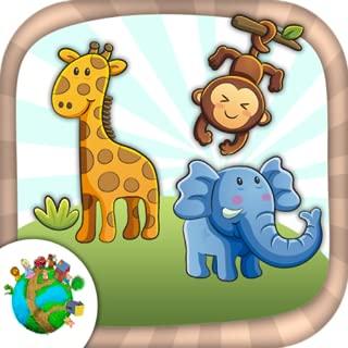 Color jungle animals
