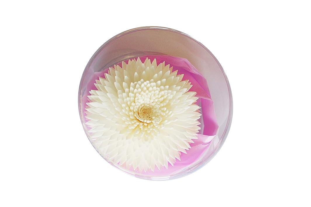 原子炉アウトドア音MAYA フラワーディフューザー ソラフラワー アナスタシア (8cm) [並行輸入品]  Aroma Flower Diffuser Sola Flwoer - Anastasia