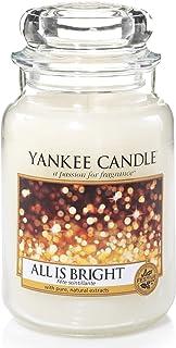 Yankee Candle Large 2-Wick Tumbler Candle, Cascading Snowberry Large Jar Candle White 1513533EZ