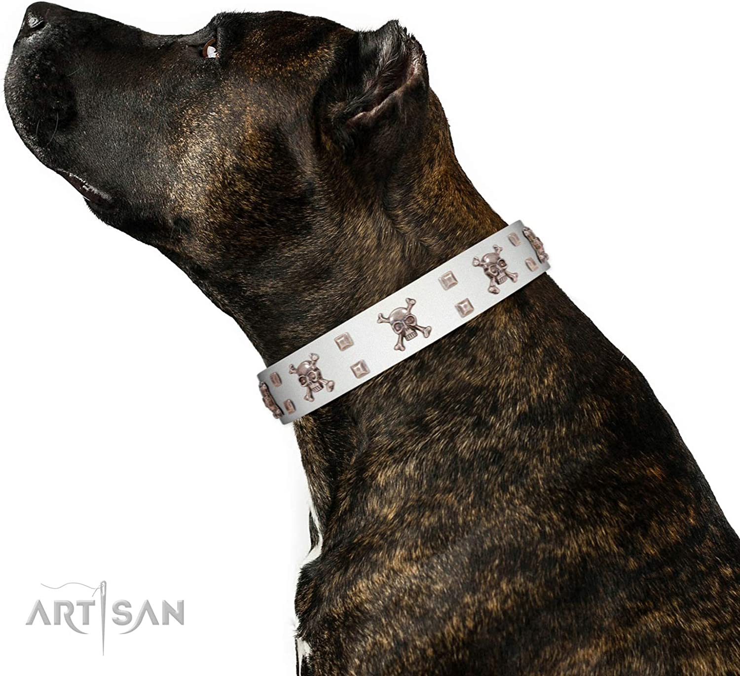 FDT Artisan 35 inch Skull Island White Leather Dog Collar with Silvery Skulls and Studs  Exclusive Handcrafted Item  1 1 2 inch (40 cm) Wide  Gift Box Included