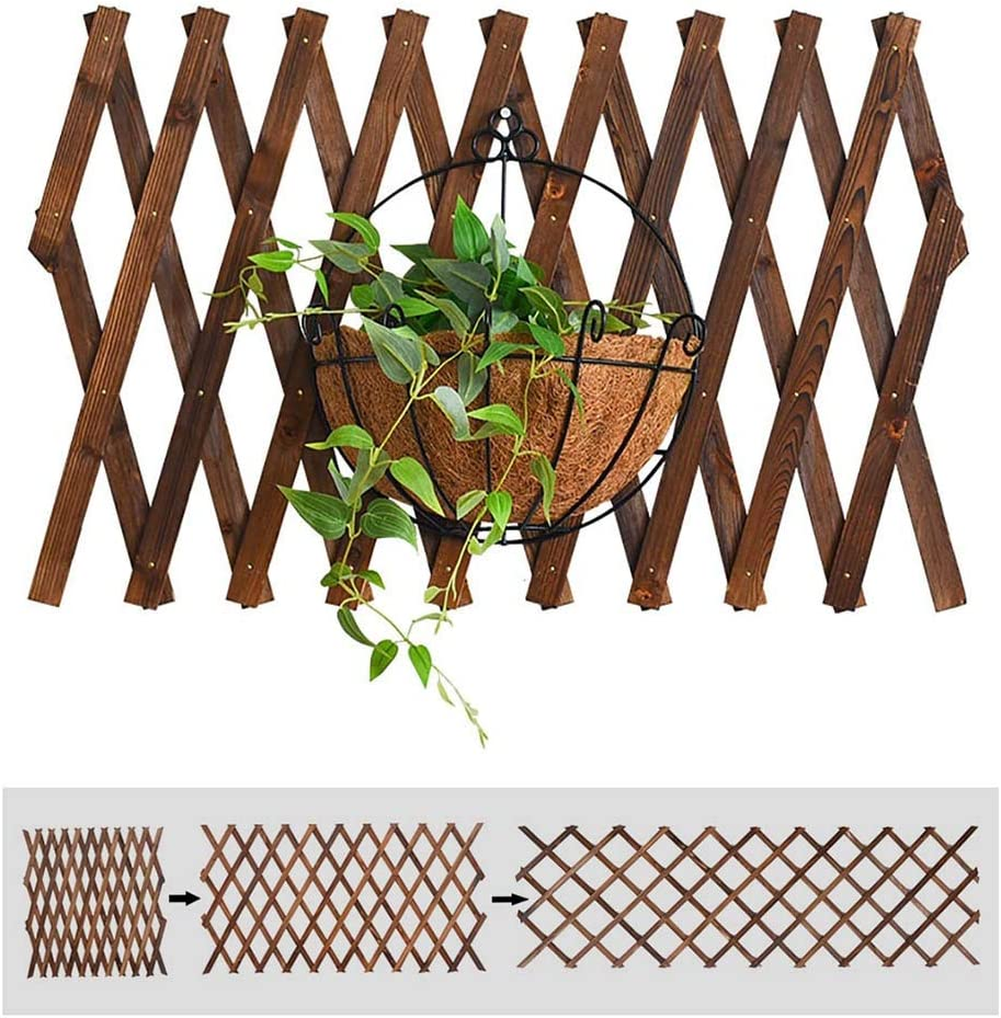 JHZWHJ Wooden Lattice Extendable Fence High quality new Grid Panel Climbing Free Shipping New Plant