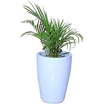 Gardenix Decor Fiber Reinforced Plastic White Pots for Indoor Plants Planters FRP Planter Gamla for Outdoor Garden-(Width:13 Inch, Height:18 inch)-Pack of: 1 Pot