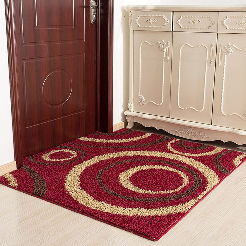 Foot Pad Doormat Door Mats in The Hall Non-Slip Absorbent Pad Doormat Doormat to Clean Your shoes Entrance Door Mats in The Hall-D 80x100cm(31x39inch)