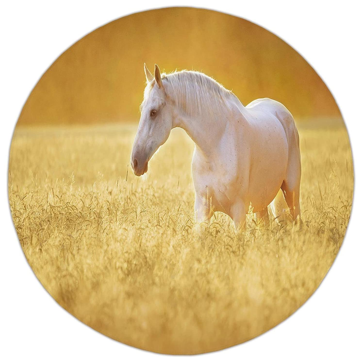 Round Area Rug Mat Rug,Horse Decor,White Orlov Trotter Horse in Rye Field Rustic Environment Autumn Sunset Farm,Yellow White,Home Decor Mat with Non Slip Backing