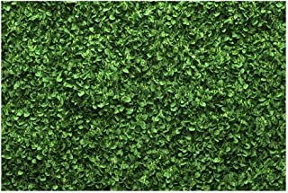 VEOEOV Geburtstags Hintergrund, 2,1 x 1,5 m grüne Blätter Wand Fotografie Hintergrund, Frühling Party Boden Dekor Hintergrund für Neugeborene, Hochzeit, Party, Event Party, Fotostudio