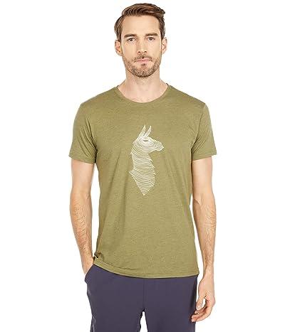 Cotopaxi Topo Llama T-Shirt