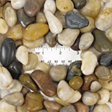 Eve's Garden Natural Polished Mixed Color Stones Large, total weight approximately 5 pounds, average size 0.75